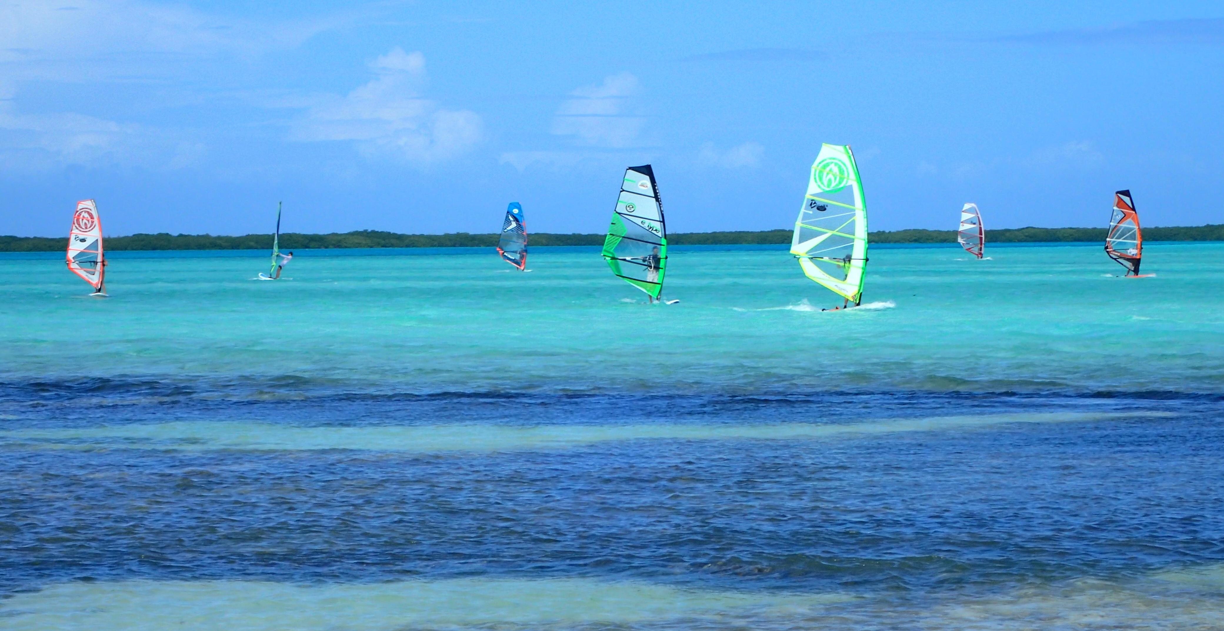 windsurfers bonaire